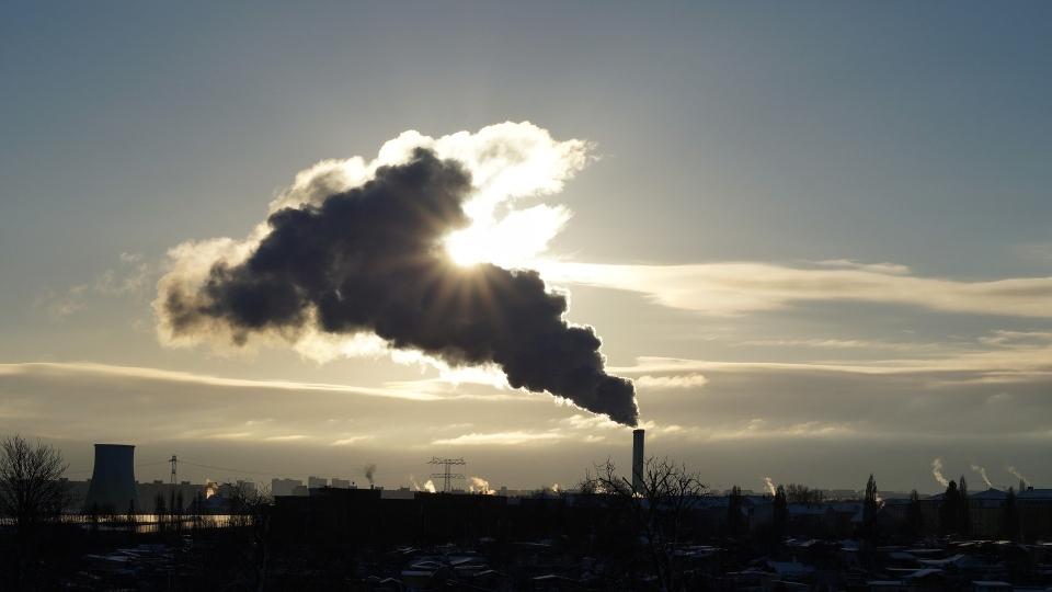 glutenologia.pl - smog, jak chronić zdrowie?